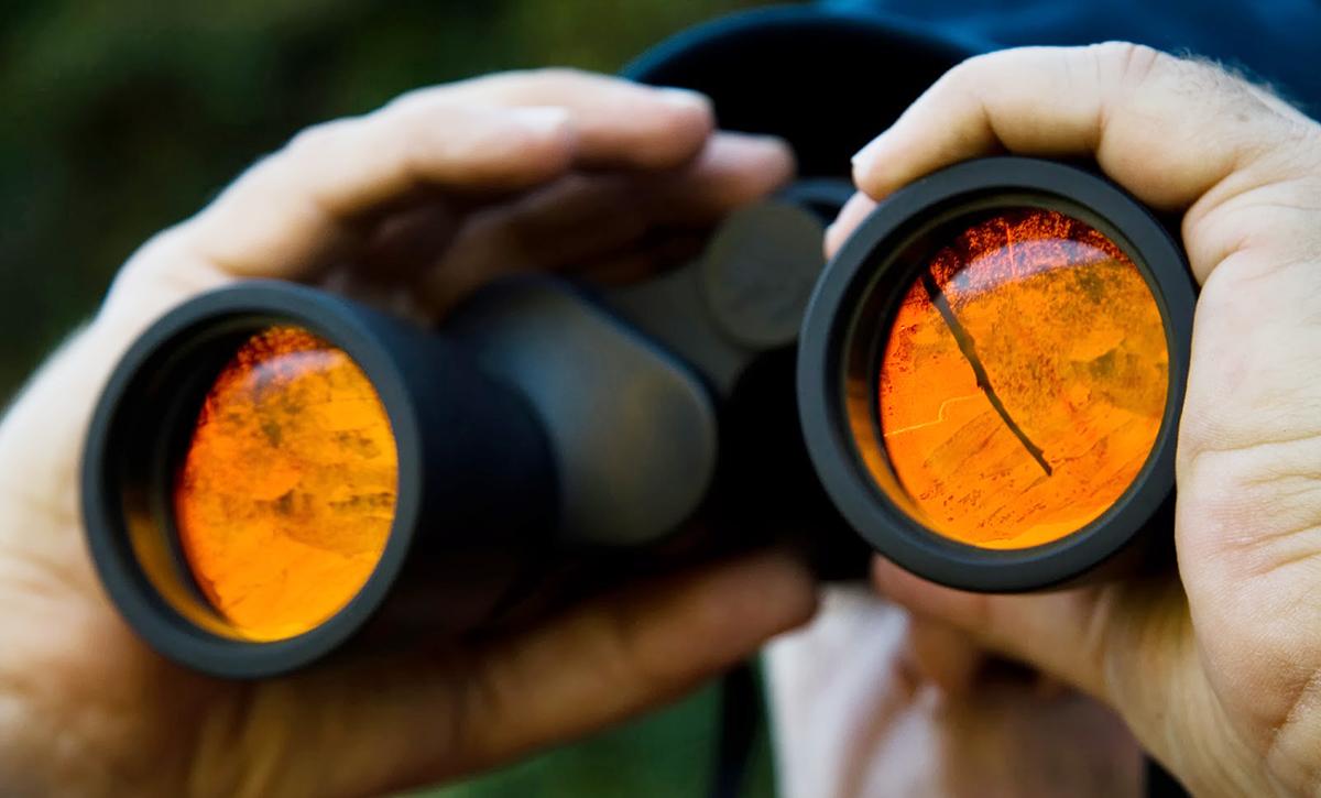 private investigator pros and cons